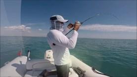 Muskar avı ve Orfoz salım videosu. Keyifli seyirler…