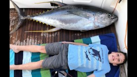 Sydney'de Yellowfin Avı
