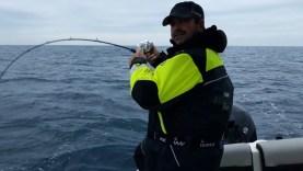 Antenli mercan ve fangri mercan avımız