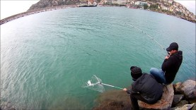 LRF ile lichia amia avı alanya ASOB