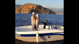 5 Dakikada Trofe Kuzu Balığı Nasıl Yakalanır / How to Catch a Giant Amberjack in 5 Minutes?