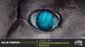 Balık Peşinde Büyük Rota – 10. Bölüm KARANLIK SULARDAN GELEN BALIKLAR