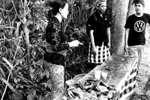 Ancient Bali Tour Bongkasa Village – Half Day Tour 02
