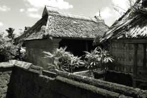 Bali Ancient Tour Penglipuran Village 09