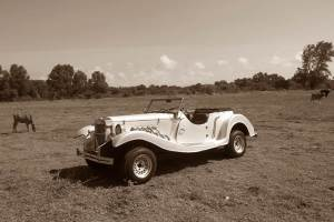 tour-in-bali-with-the-vintage-car-hpi