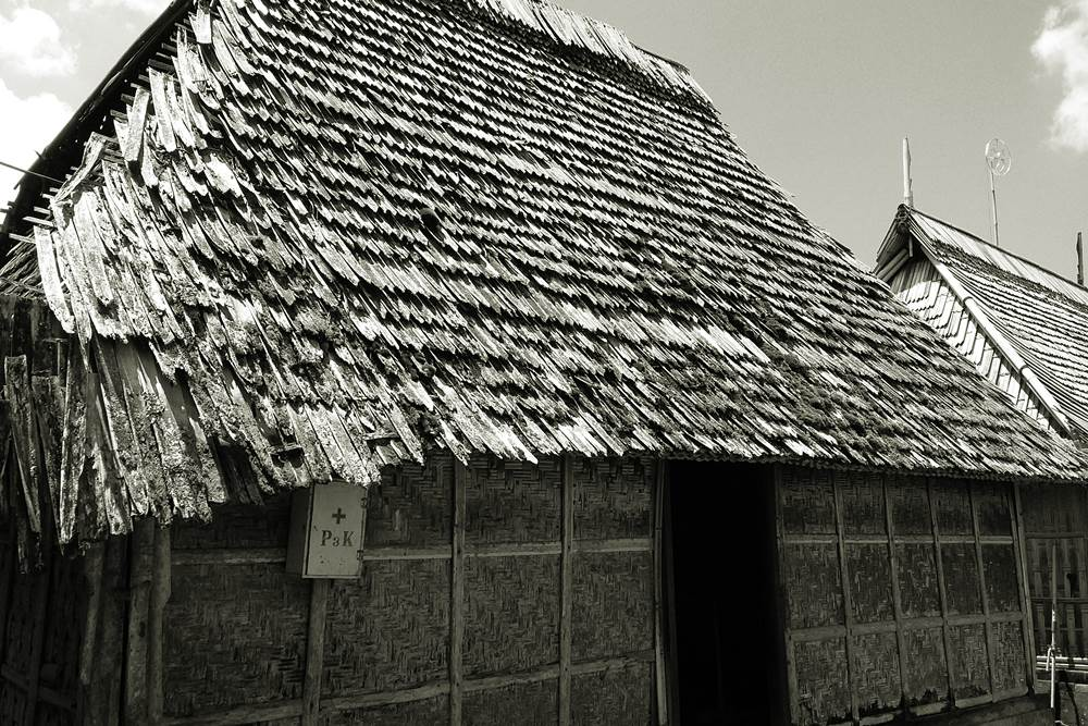 Bali House Penglipuran Village