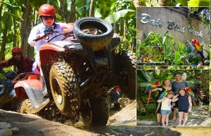Bali Quad Biking and Bali Bird park tour