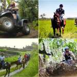 Bali Quad Biking and Horse Riding Tour