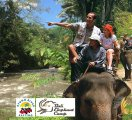 Bali Elephant Camp Rafting Packages – Bali Adventure Packages