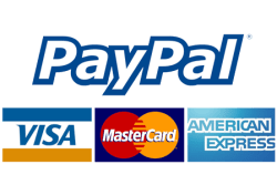 paypal, payment, online, payment online, online pay, method of payment