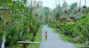 bali ancient village safari tour, penglipuran village, bali, ancient village, bali ancient village, penglipuran village bali, tourist destinations, bali tourist destinations