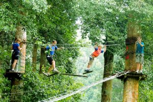 bali tree top, adventures