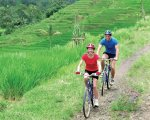 sobek, bali, adventure, cycling, rice paddy, mountain cycling, sobek bali, sobek bali adventure, sobek cycling