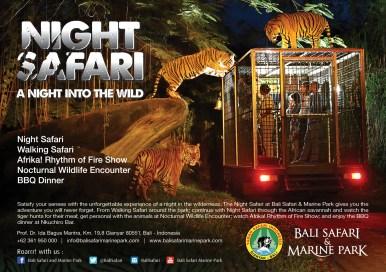 safari night