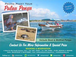 paket wisata pulau penyu
