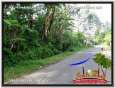 Exotic PROPERTY Ubud Payangan 15,600 m2 LAND FOR SALE TJUB601