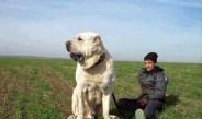 Mangal yürekli Anadolu arslanı