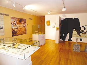 © Musée Escale Haut-Rhône