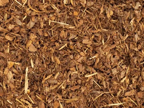 12mm Pine Bark
