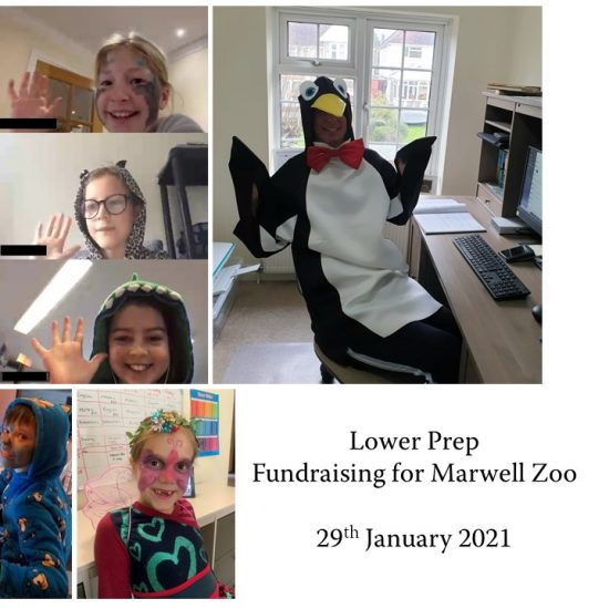 Marvellous Fundraising for Marwell Zoo