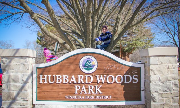 Hubbard Woods in Winnetka