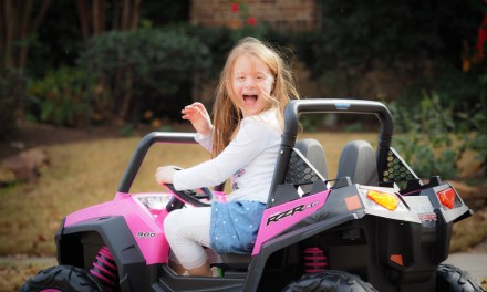 The Pink Peg Perego Polaris RZR 900 Ride On: Redefining Girly Girl