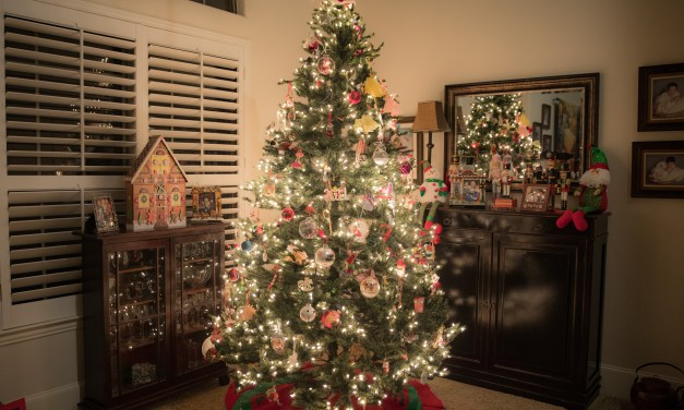 Oh Christmas Tree – Some Little Known Facts About Them