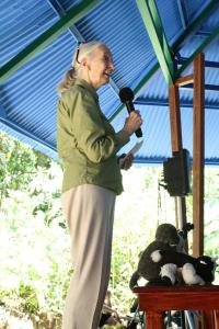 Jane Goodall photos by Marco Gutierrez (1)