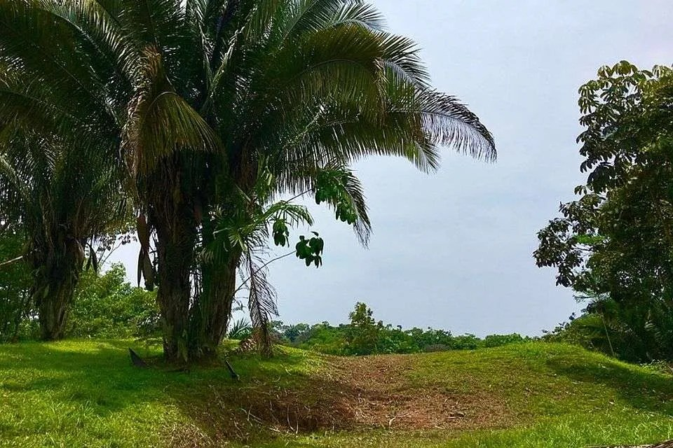 lots and home for sale in Ojochal
