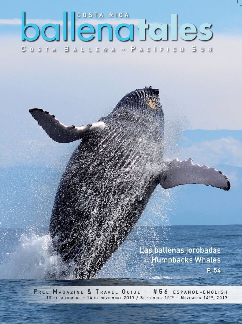 Magazine and Travel Guide, South Pacific Costa Rica Issue #56, Whales and Dolphins Festival,