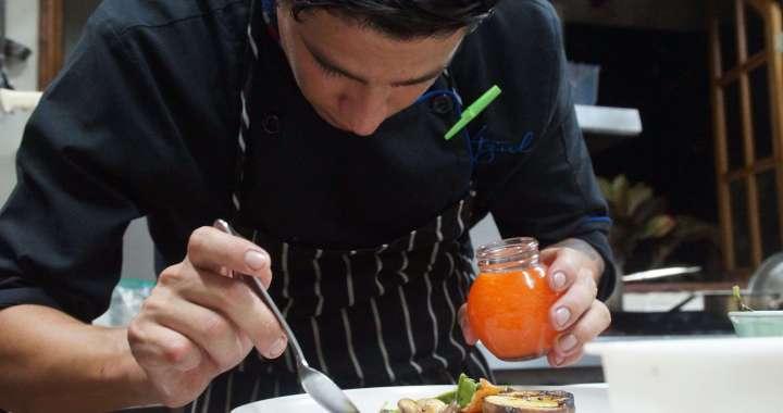 gastronomy, gourmet food, Castillo Hotel,