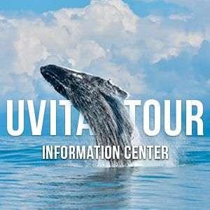 Uvita Tour InfoCenter