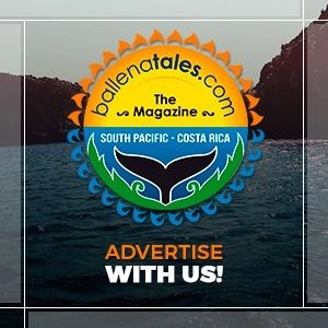 Advertise-with-us-Ballena-Tales-Magazine