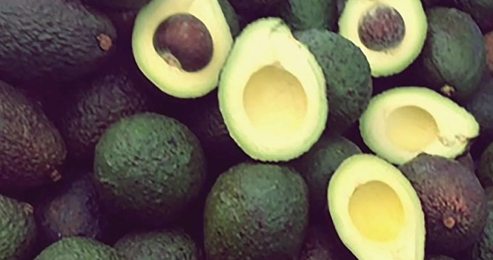 AVOCADO, aguacate, super food,