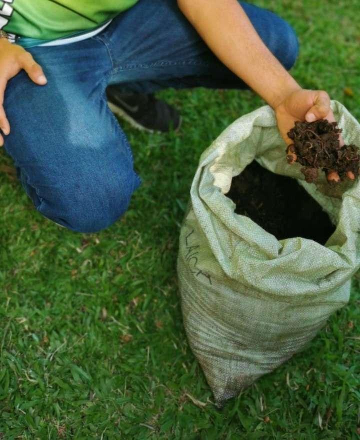 Umweltfreundliche Landwirtschaft für eine nachhaltige Welt 1