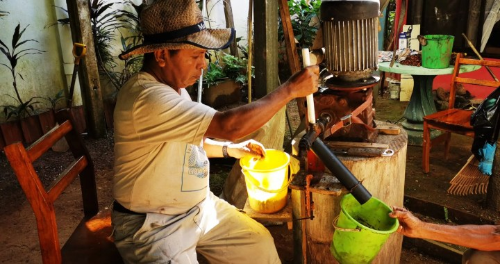 Authentic CACAO Pura Muba 8