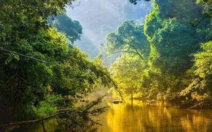 Climate, Mood and Environment - Clima, estado de ánimo y ambiente