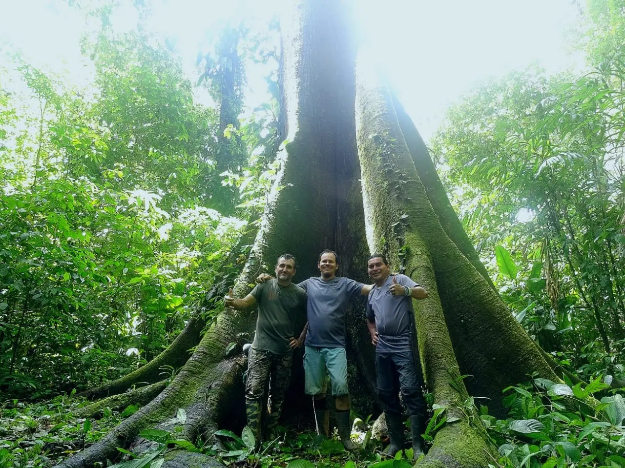 COVIRENAS – Protecting Biodiversity 1