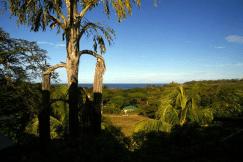 Acerca de los propietarios del Hostel Cascada Verde en Uvita 8