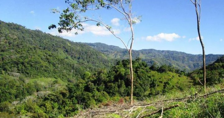 Gorgeous 17 Acre Ocean View Property for sale, South Pacific Costa Rica 6