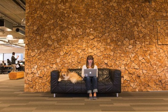 Inside HootSuite's Offices By SSDG Interiors