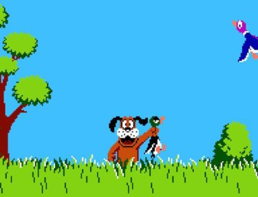 Nintendo's DUCK HUNT