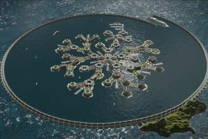 Floating Cities in the Pacific Ocean