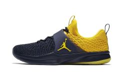 Jordan Trainer 2 Flyknit Michigan
