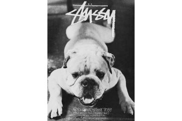 Stussy Fall 2017 Campaign