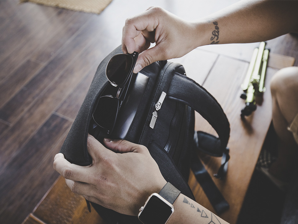 Arcus Backpack by Moshi