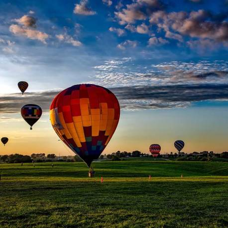 Ballone_bunt800x800.jpg