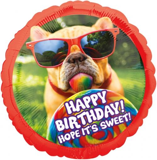 Geburtstagswunsche Vom Hund Geschenke Zazzle De