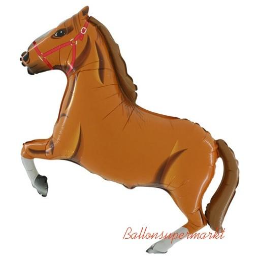 Pferde Selfie Puzzle Lustige Pferdebilder Lustige Pferde