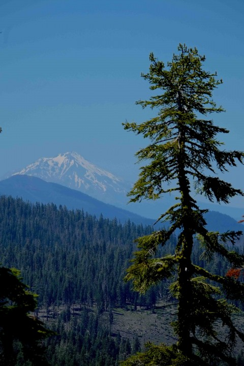 Shasta from Inspiration Point June 29 2014 edited, small